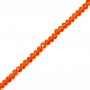 1 Strang facettierte Rondellen 3x4 mm orange